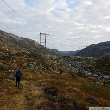Høyvertjørn (Grasdalen, Bjørndalsvatn)